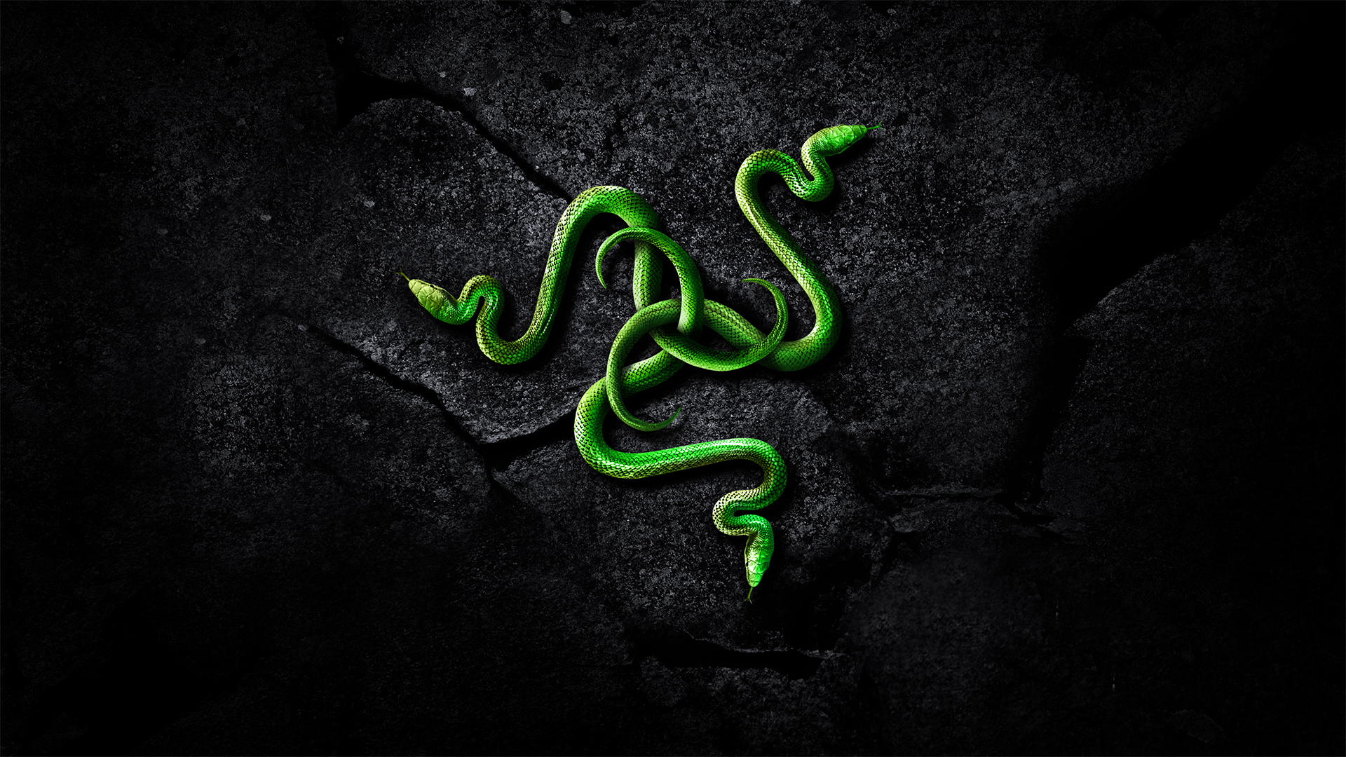 Razer Wallpaper 1080P Wallpaper