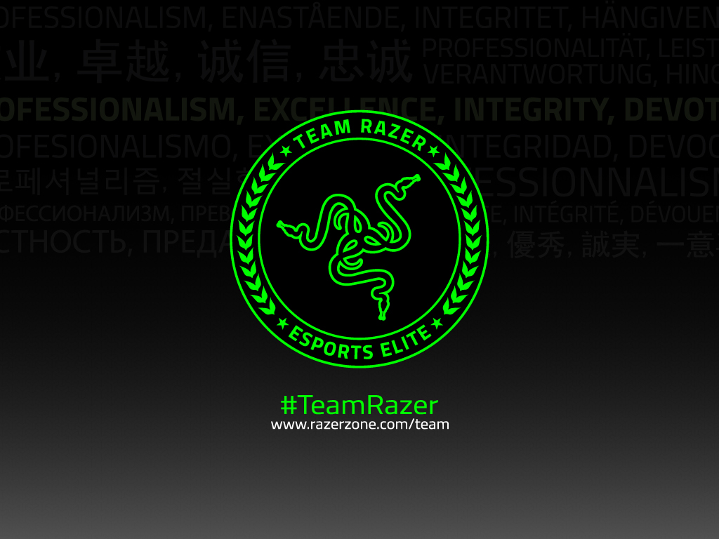 razerのTEAM RAZER VALUESの壁紙です。