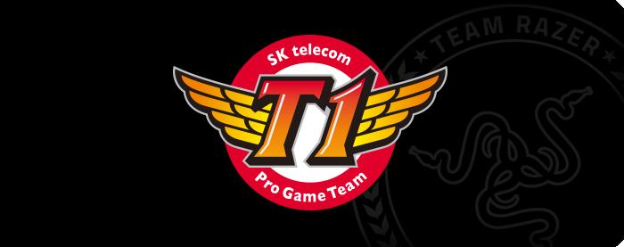 skt logo Gallery