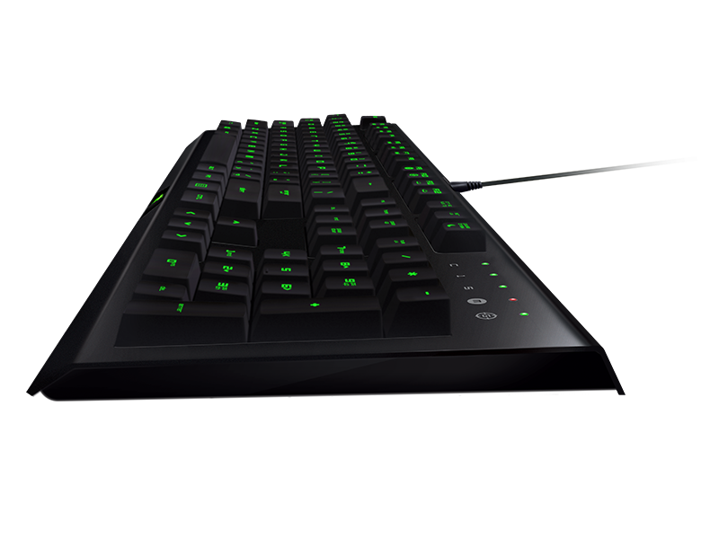 Razer Cynosa Pro And Razer Deathadder Bundle