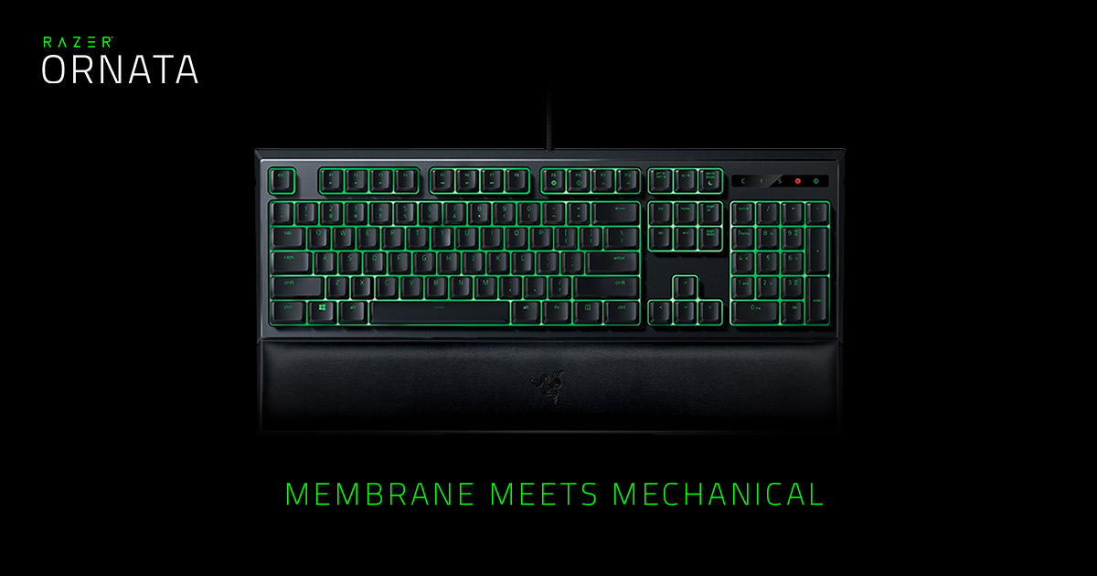 Mechanical Membrane Keyboard