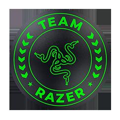 Team Razer Floor Mat